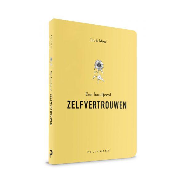 Een handjevol ZELFVERTROUWEN boek